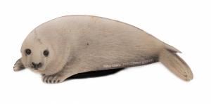 Magnes drewniany foka szara dziecko